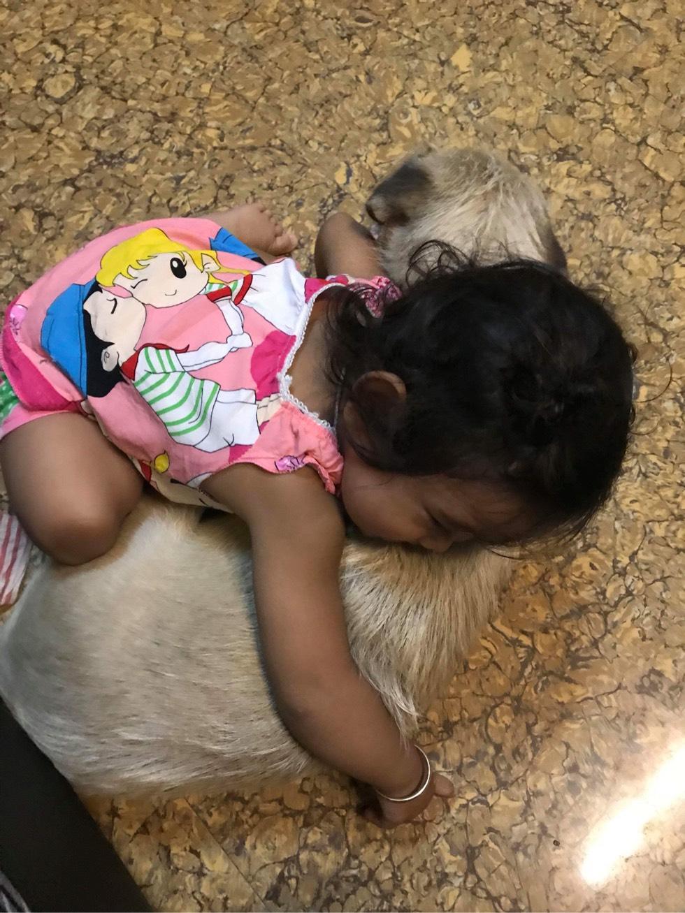 小狗和小妹妹 #好朋友