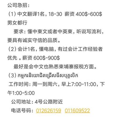 公司急聘中文翻译