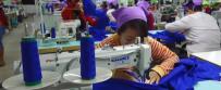 柬埔寨竟然有这么多台商?